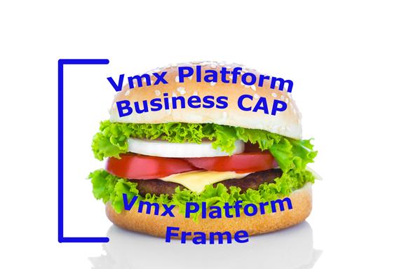 Vmx Platform Frame & Business CAP